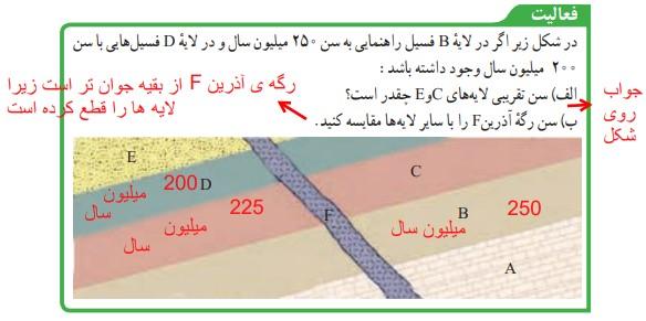 فعالیت صفحه 81 علوم نهم